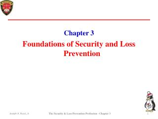 Chapter 3 Foundations of Security and Loss Prevention