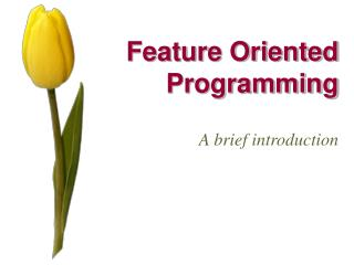 Feature Oriented Programming