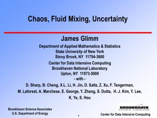 Chaos, Fluid Mixing, Uncertainty