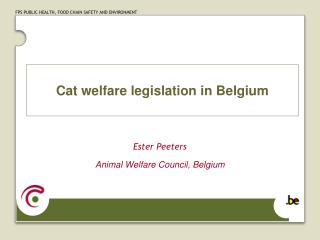 Cat welfare legislation in Belgium