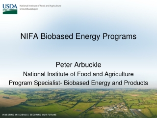 Food and Energy Sustainability of Biofuels