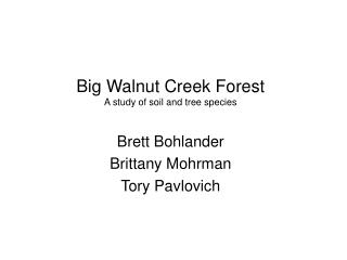 Big Walnut Creek Forest A study of soil and tree species