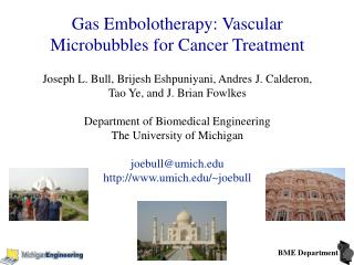 Gas Embolotherapy: Vascular Microbubbles for Cancer Treatment