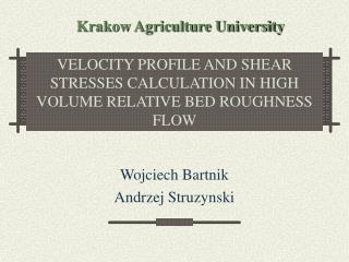 VELOCITY PROFILE AND SHEAR STRESSES CALCULATION IN HIGH VOLUME RELATIVE BED ROUGHNESS FLOW