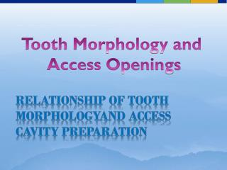 Tooth Morphology and  Access  Openings