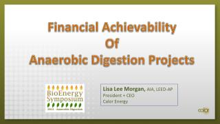 Financial  Achievability Of Anaerobic Digestion Projects