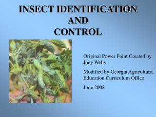 INSECT IDENTIFICATION AND  CONTROL