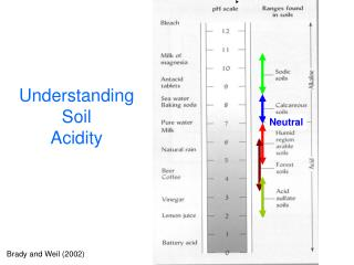 Understanding                                 Soil Acidity