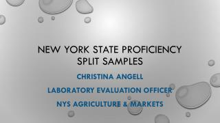 New York State Proficiency Split Samples