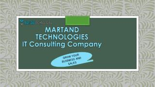 Grow Your Business With our IT Consulting Services