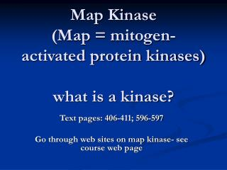 Map Kinase  (Map = mitogen-activated protein kinases) what is a kinase?