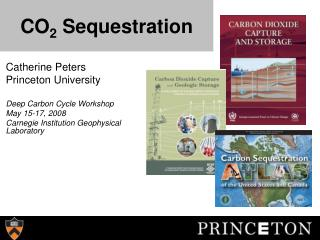 CO 2  Sequestration