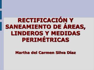 RECTIFICACIÓN Y SANEAMIENTO DE ÁREAS, LINDEROS Y MEDIDAS PERIMÉTRICAS Martha del Carmen Silva Díaz