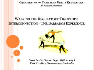 Walking the Regulatory Tightrope: Interconnection - The Barbados Experience