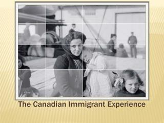 The Canadian Immigrant Experience