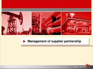 Management of supplier partnership