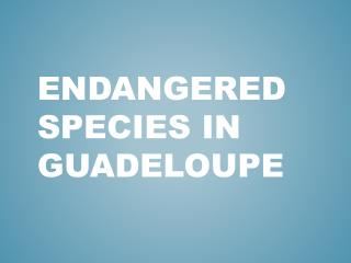 ENDANGERED SPECIES IN GUADELOUPE