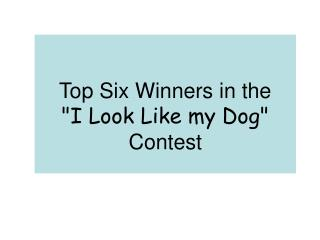 "Top Six Winners in the  ""I Look Like my Dog""  Contest"