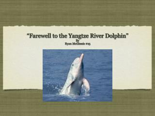 """Farewell to the Yangtze River Dolphin"" By Ryan McGinnis #15"