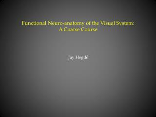 Functional Neuro-anatomy of the Visual System:  A Coarse Course
