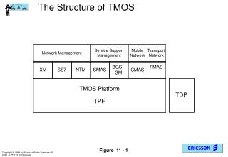 The Structure of TMOS
