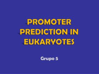 Promoter prediction in eukaryotes