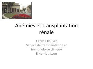 Anémies et transplantation rénale