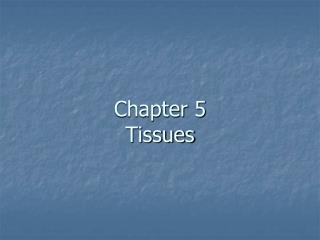 Chapter 5 Tissues