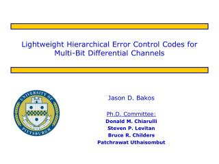 Lightweight Hierarchical Error Control Codes for Multi-Bit Differential Channels