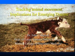 Tracking animal movement: Implications for Emerging Disease