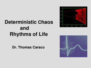 Deterministic  C haos and Rhythms of Life