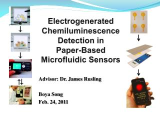 Electrogenerated Chemiluminescence  Detection in  Paper-Based Microfluidic Sensors