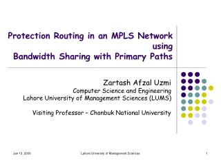 Protection Routing in an MPLS Network using Bandwidth Sharing with Primary Paths