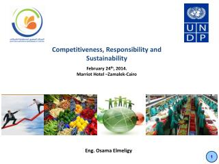 Competitiveness, Responsibility and Sustainability  February 24 th , 2014.