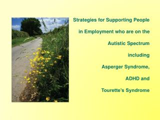 Strategies for Supporting People in Employment who are on the  Autistic Spectrum  including