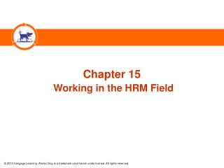 Chapter 15 Working in the HRM Field