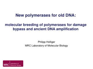New polymerases for old DNA:   molecular breeding of polymerases for damage bypass and ancient DNA amplification