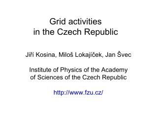Grid activities  in the Czech Republic
