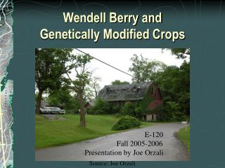 Wendell Berry and  Genetically Modified Crops