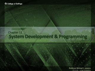 System Development & Programming
