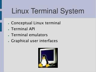 Linux Terminal System