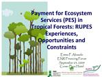 Payment for Ecosystem Services PES in Tropical Forests: RUPES Experiences, Opportunities and Constraints