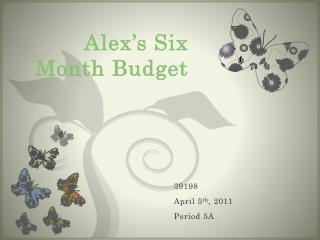 Alex's Six Month Budget