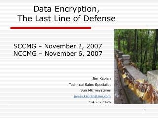 Data Encryption, The Last Line of Defense