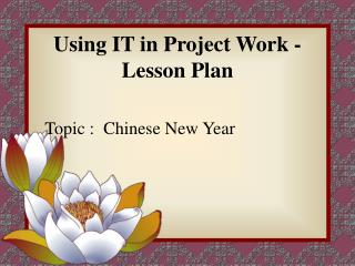 Using IT in Project Work - Lesson Plan