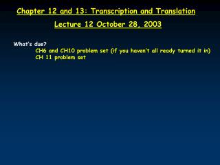 Chapter 12 and 13: Transcription and Translation Lecture 12 October 28, 2003
