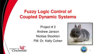 Fuzzy Logic Control of Coupled Dynamic Systems