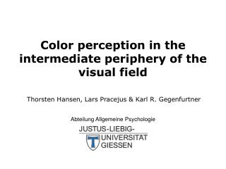 Color perception in the intermediate periphery of the visual field