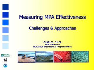 Measuring MPA Effectiveness Challenges & Approaches