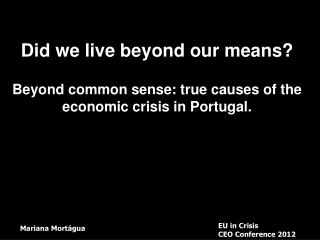 Did we live beyond our means? Beyond common sense: true causes of the economic crisis in Portugal.